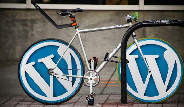 WordPress.com ile WordPress.org Arasındaki Fark Nedir?